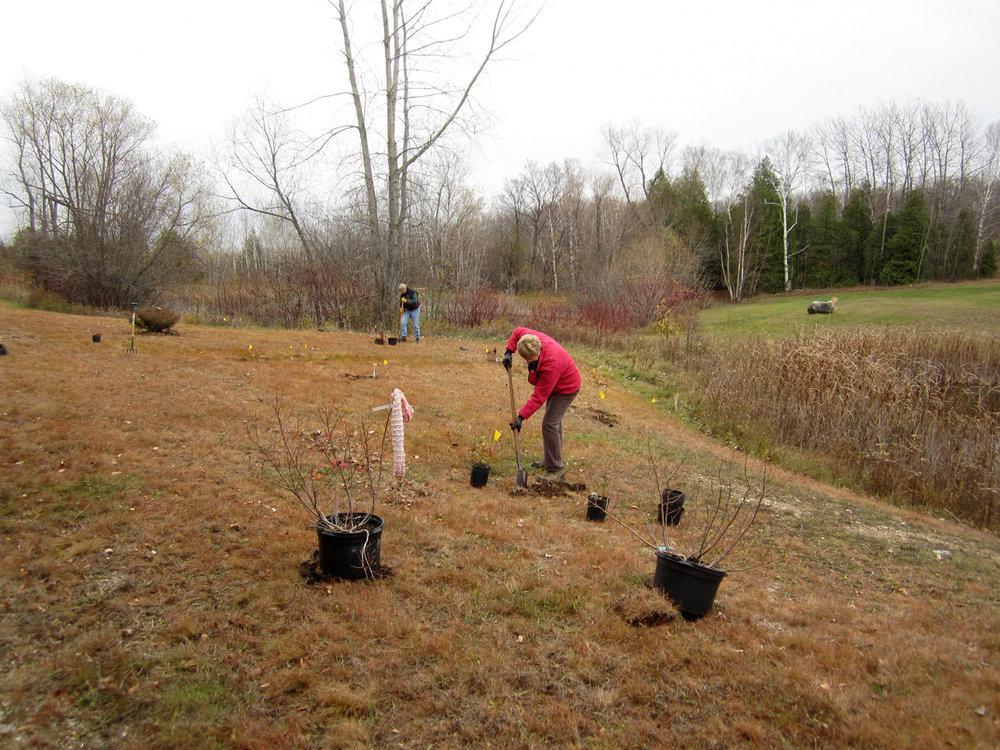gv-planting2-LoP-aten.jpg