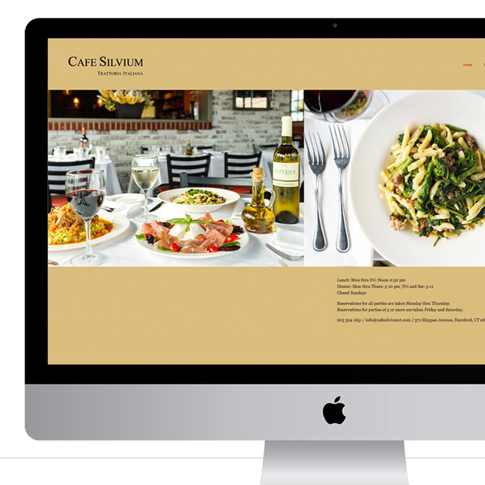 SIlvium_Website.png