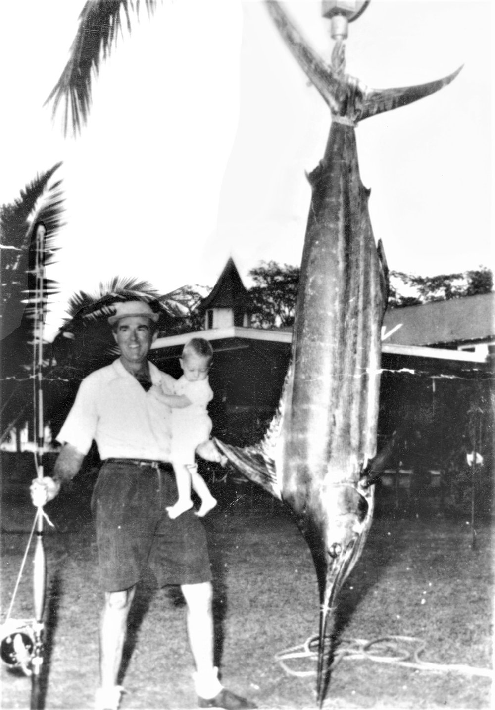 2 Year Old Marlin.jpg
