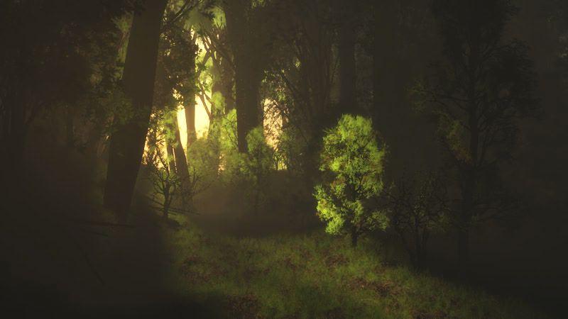 01-Forêt 41.jpg