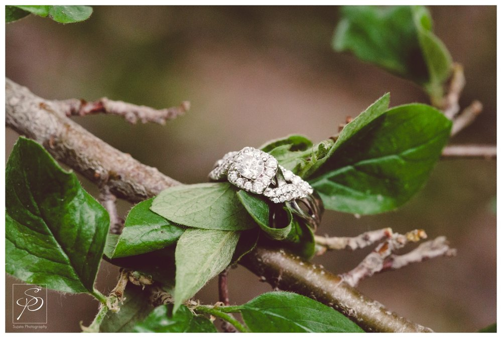 Diamond Engagement ring on tree branch