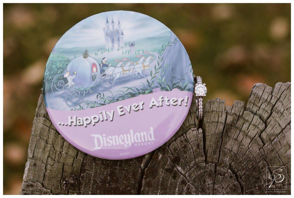Disneyland Calgary Engagement Photography Crystal Sujata