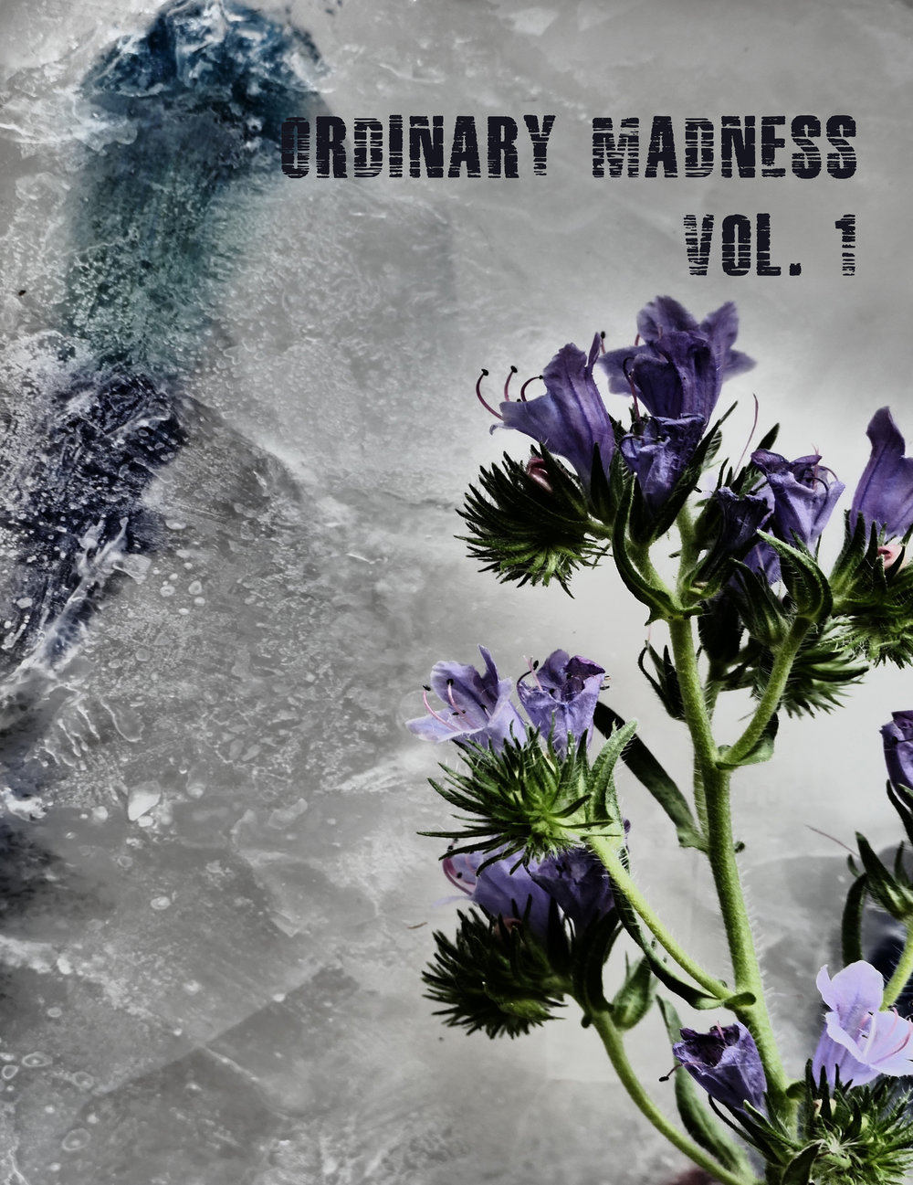Ordinary Madness    Vol. 1