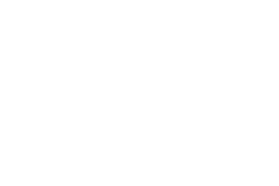 Levelwing-Assets-Clients-New-York-Red-Bulls-Logo.png