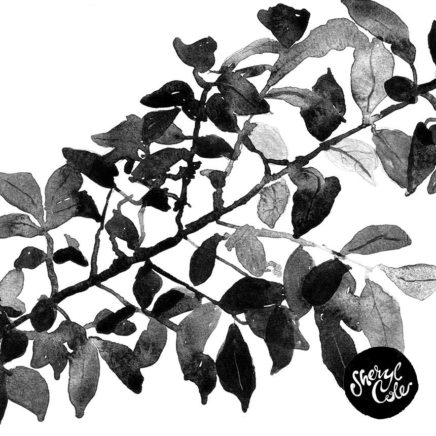 SherylCole_1NaturesSilhouette860.jpg