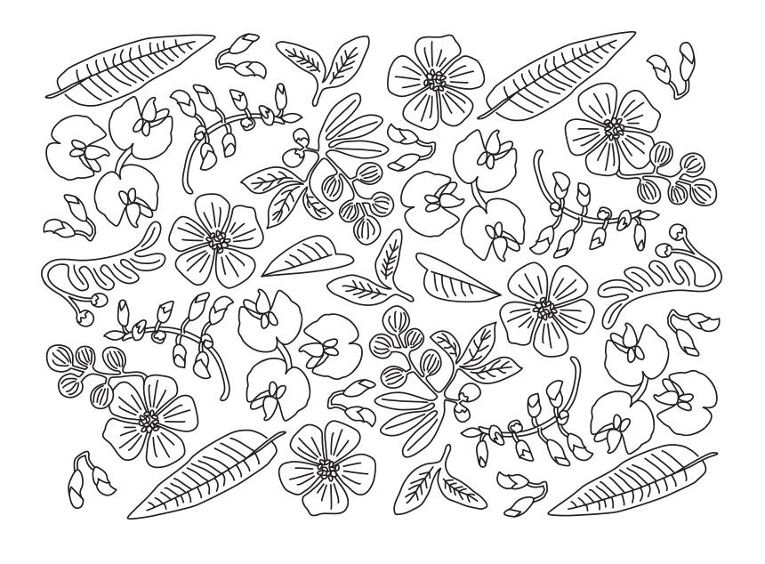 SherylCole_Botanical860.jpg