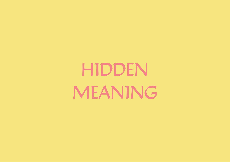 Hidden Meaning Samia Ahmed