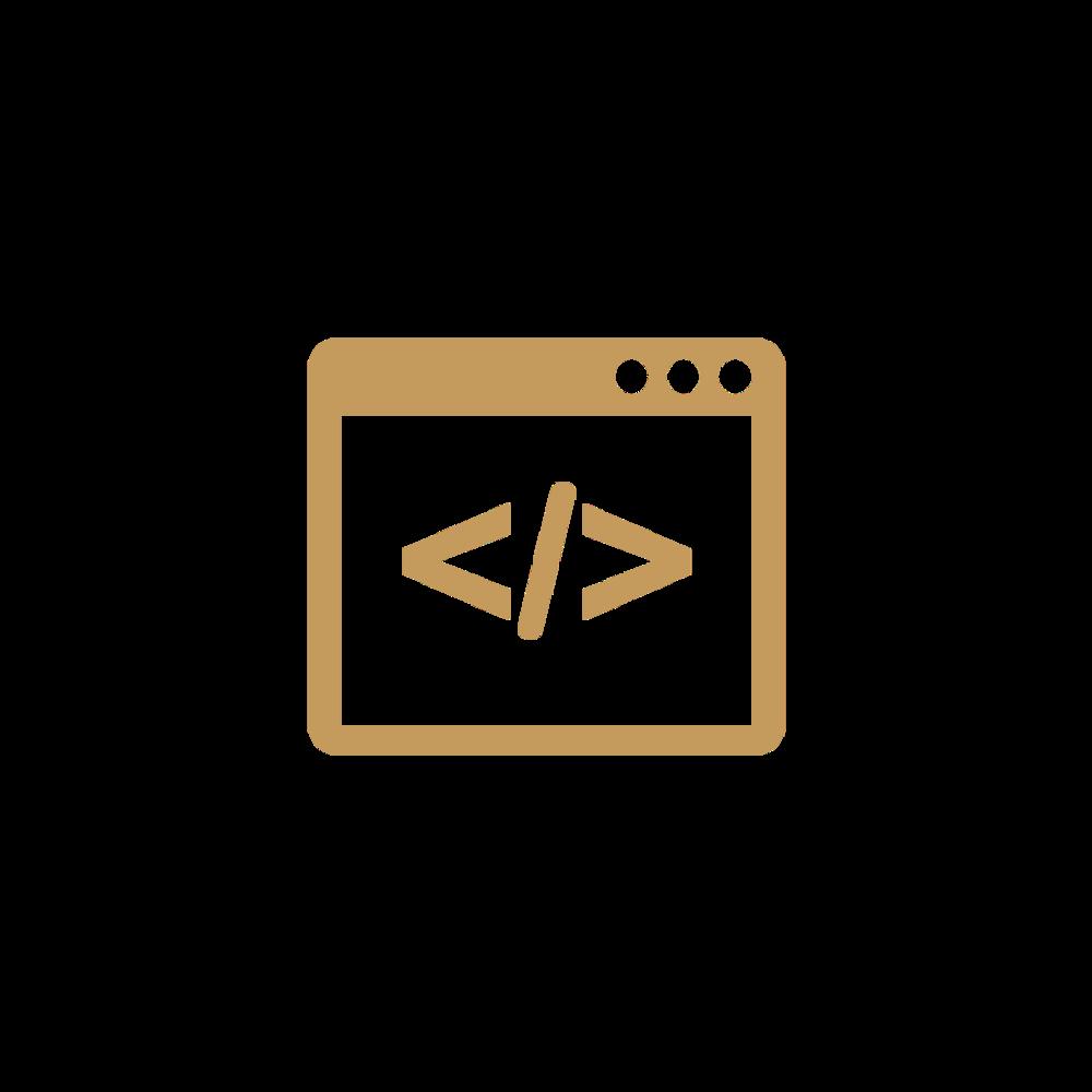 CustomCode.png