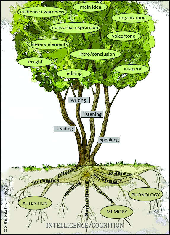 L tree with labels and border.jpg
