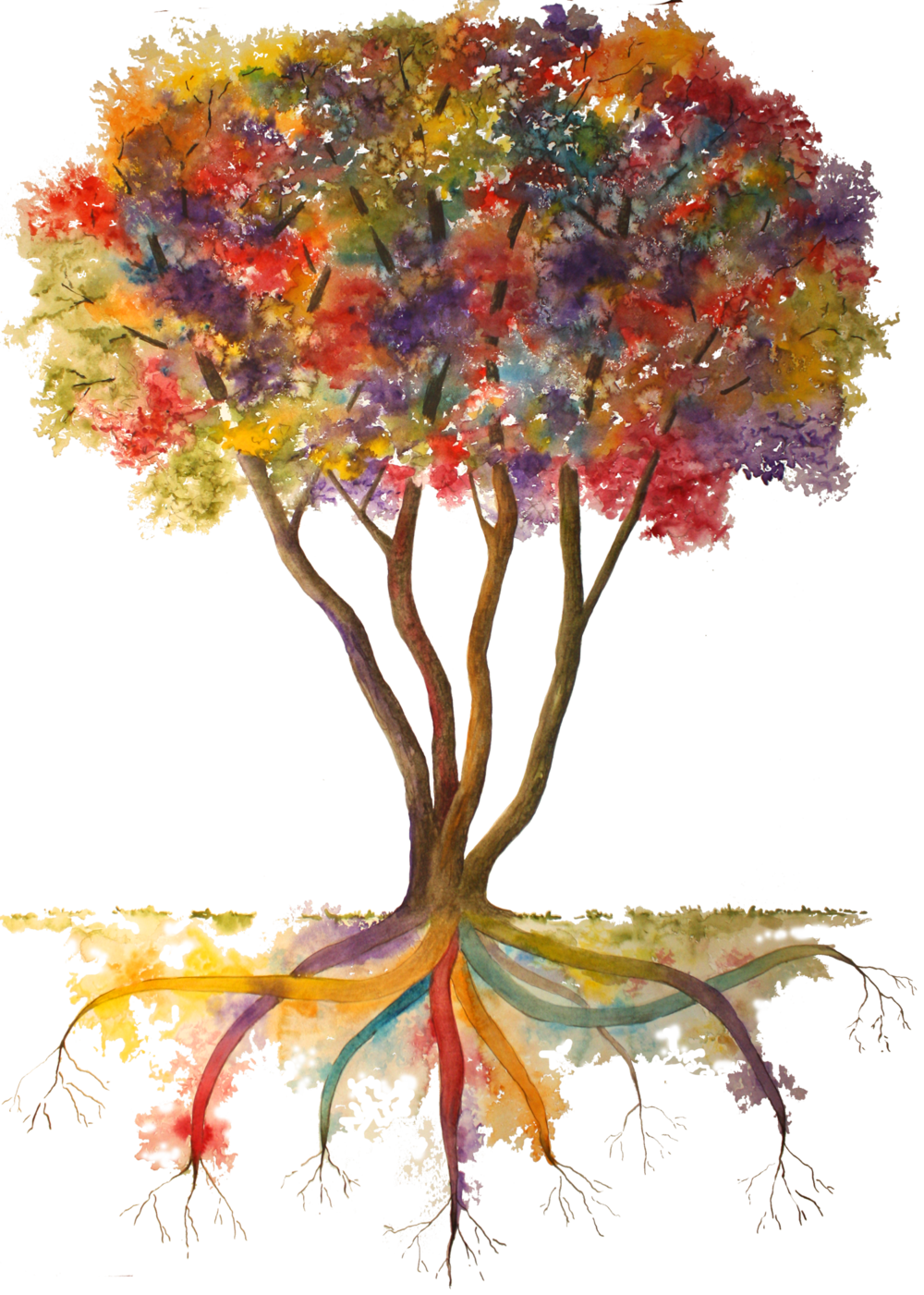 Rainbow Tree w Transpt Backgrnd-5x7.png