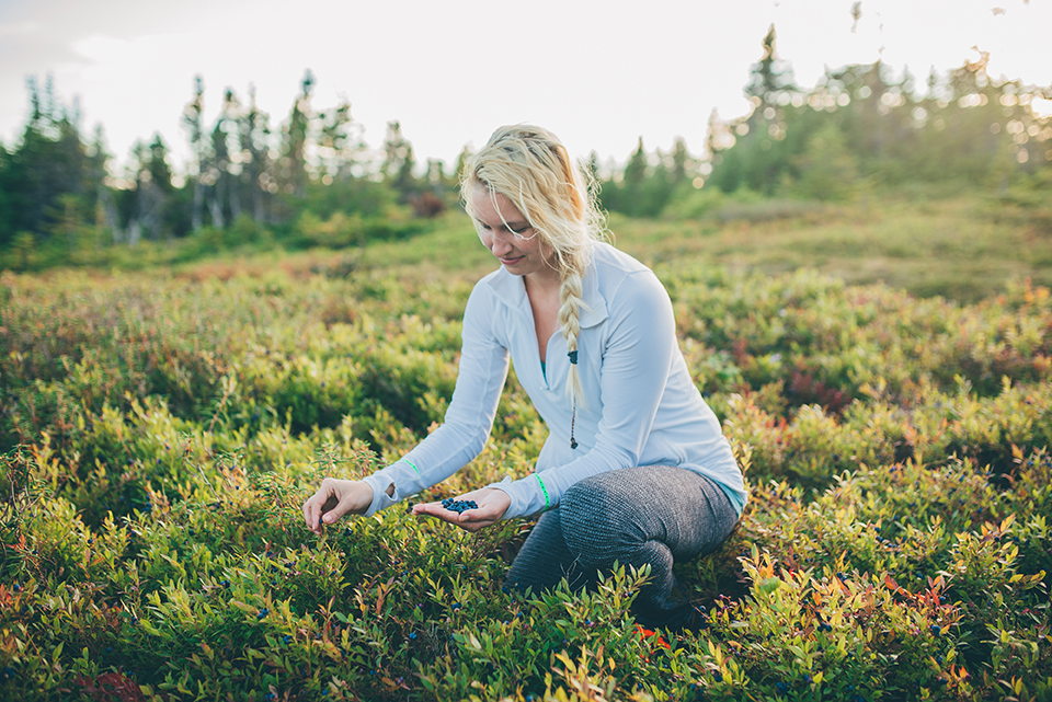 Berry-Picking-Newfoundland