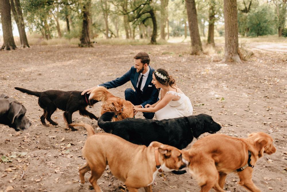 Toronto Documentary Wedding Photographer (2).jpg