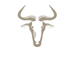 websiteTHE WILDEBEEST LOGO.png