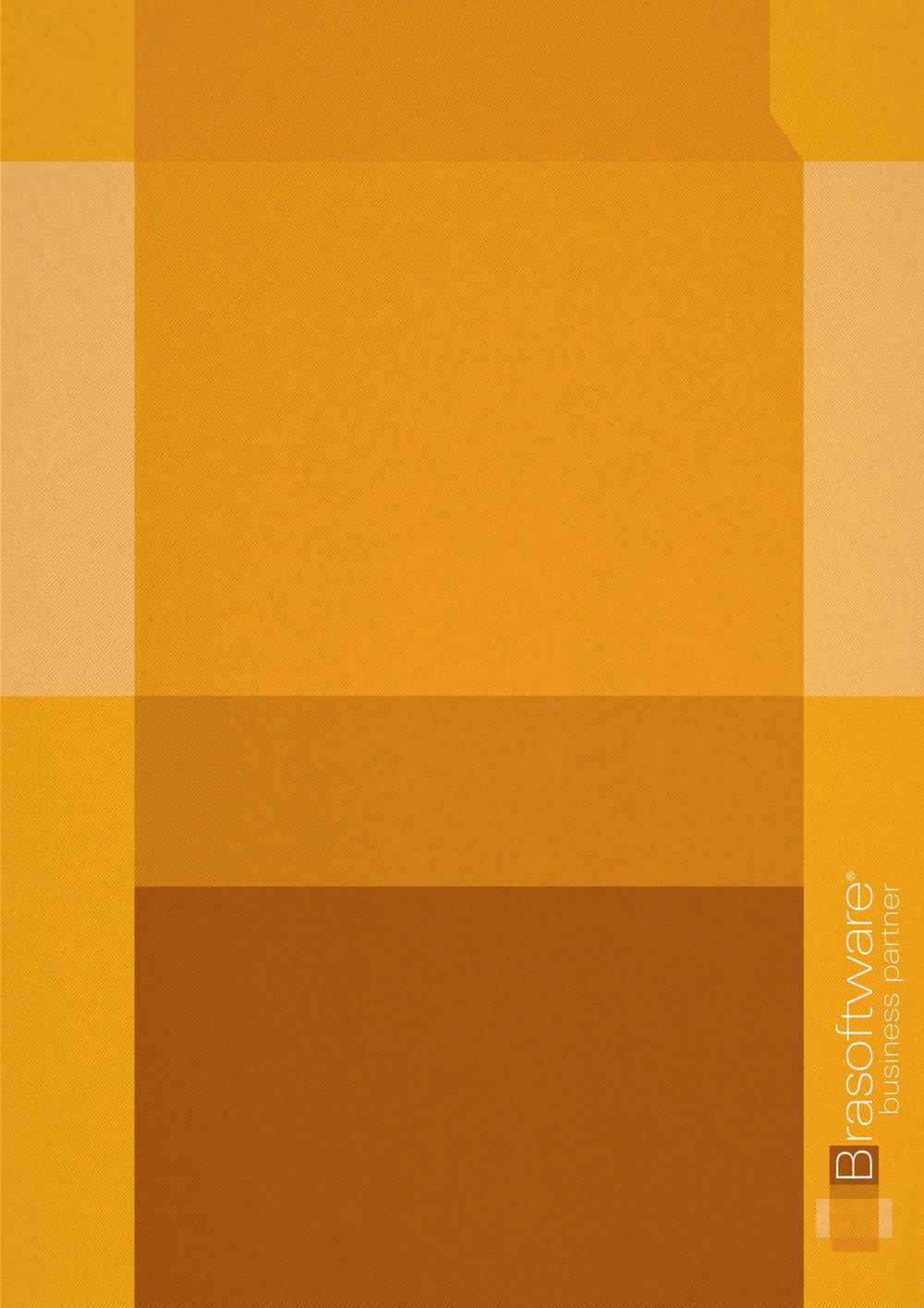 brasoftware-poster-2.jpg
