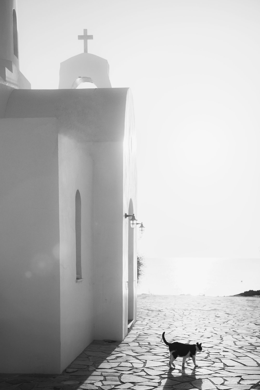 Agios Nikolaos Church, Protaras, 2018