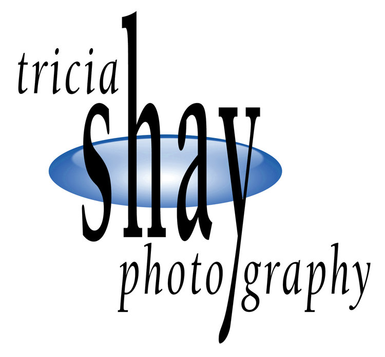 Tricia Shay Architectural Photography