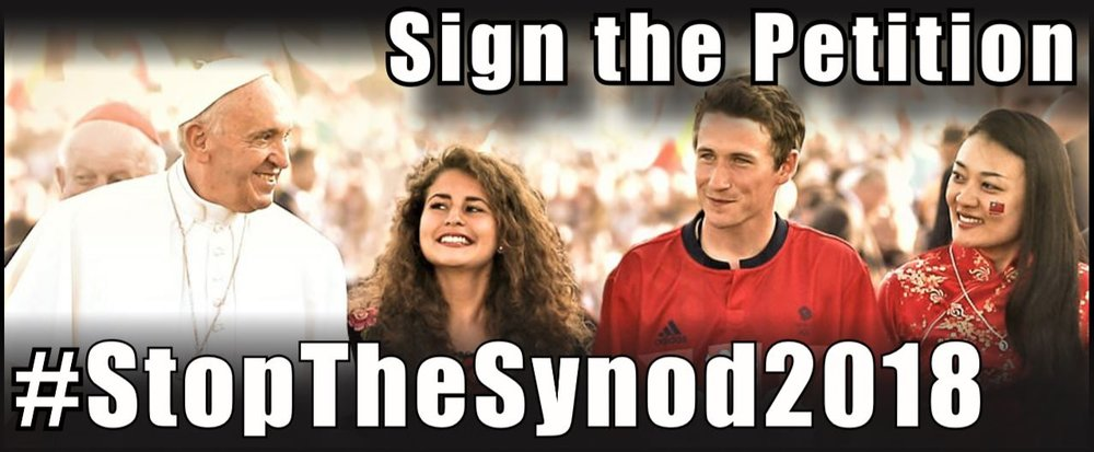 synod_banner.JPG