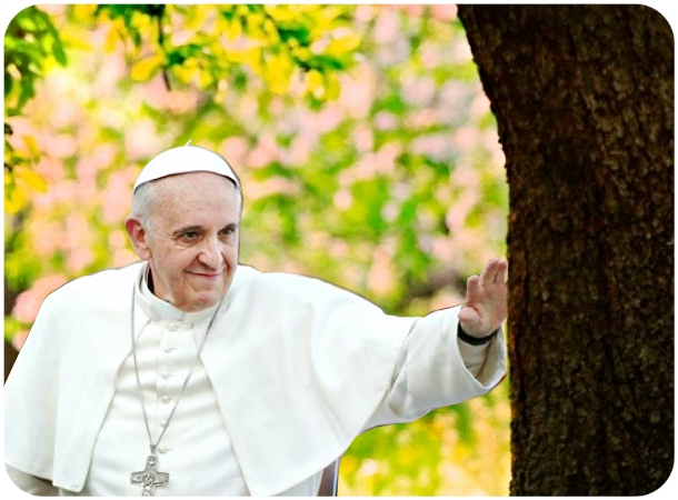 Pope_Francis_tree.jpg