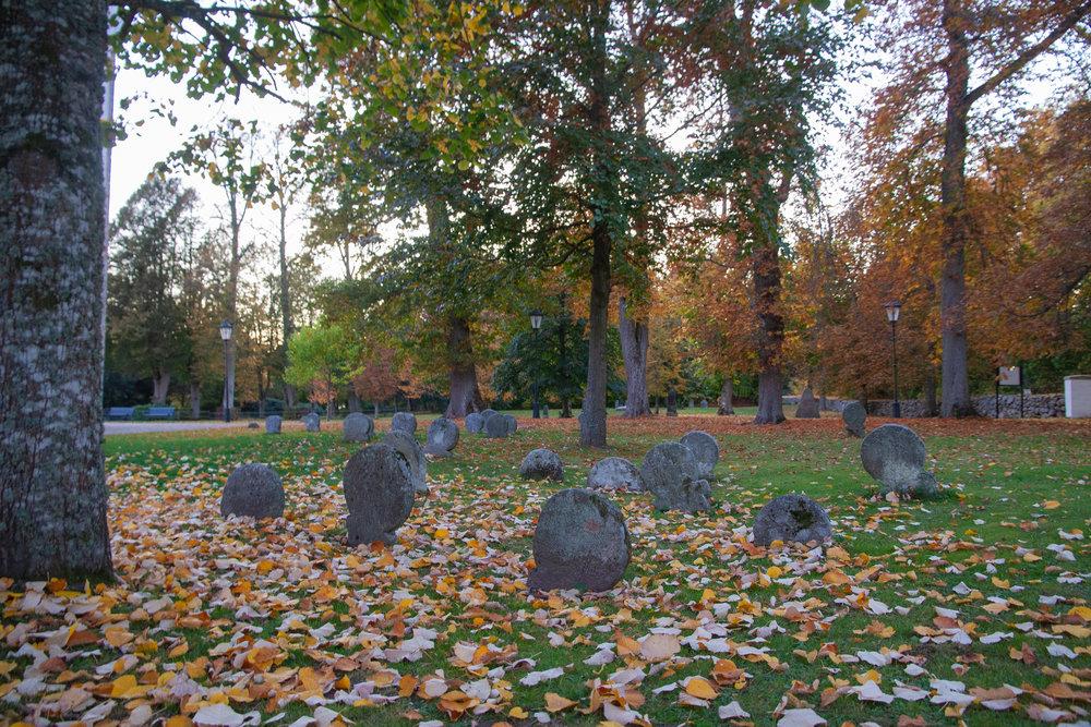 Nunnornas gravar norr om kyrkan