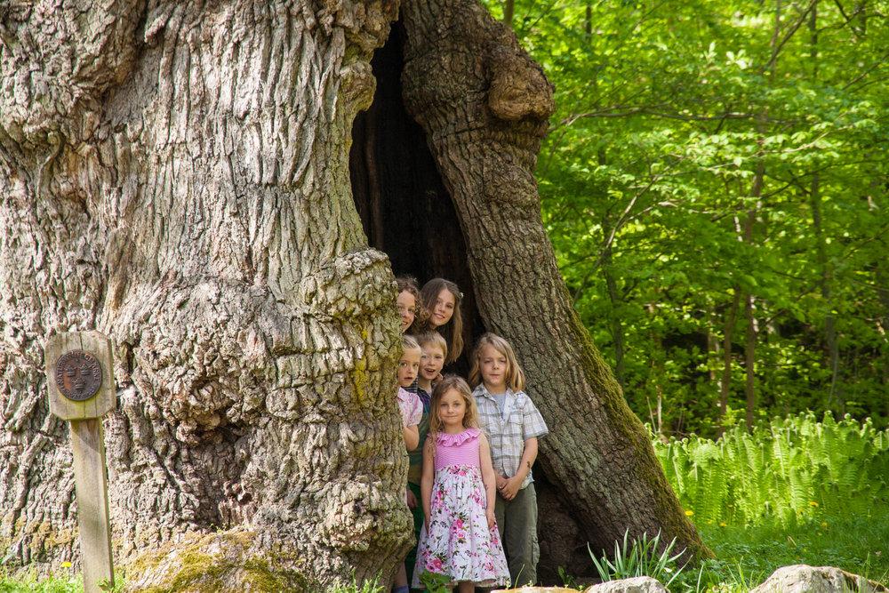 Family & Children -