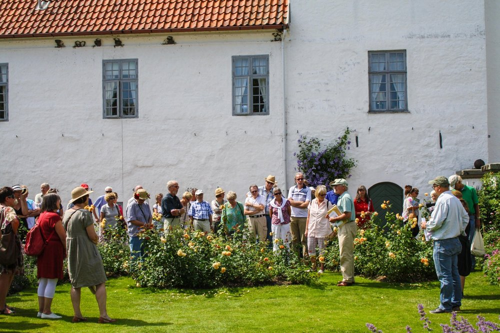 Guided Tours -