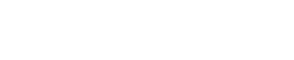 Lake Point Logo_white.png