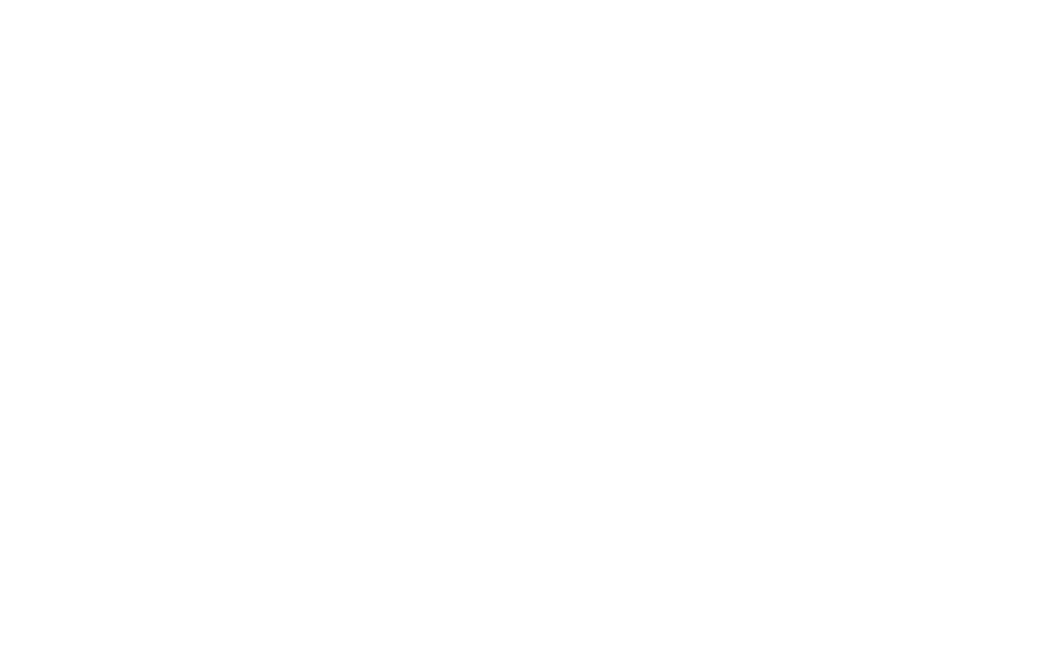 Beerman Coaching & Consulting