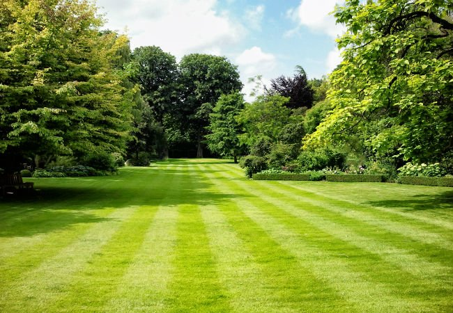 Complete Lawn care & Landscape Maintenance - From preventing your lawn from becoming overgrown with weeds and crabgrass to breaking up compacted soil and applying fertilizer to promote the growth of your grass, D & D Excavating & Landscape Service, Inc. has what you're looking for.