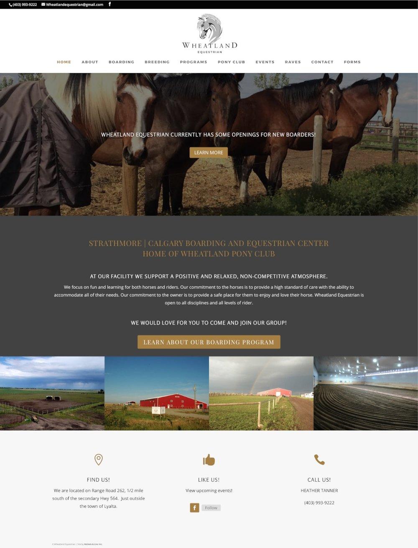 okotoks-horse-boarding-website-home-1.jpg