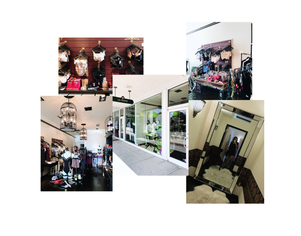 Lingerie Boutique on Long Island La Femme Danergeous.png