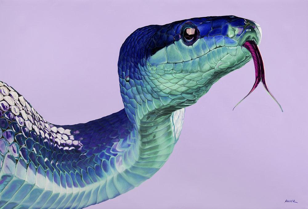 Helmut Koller, Snake on Light Violet