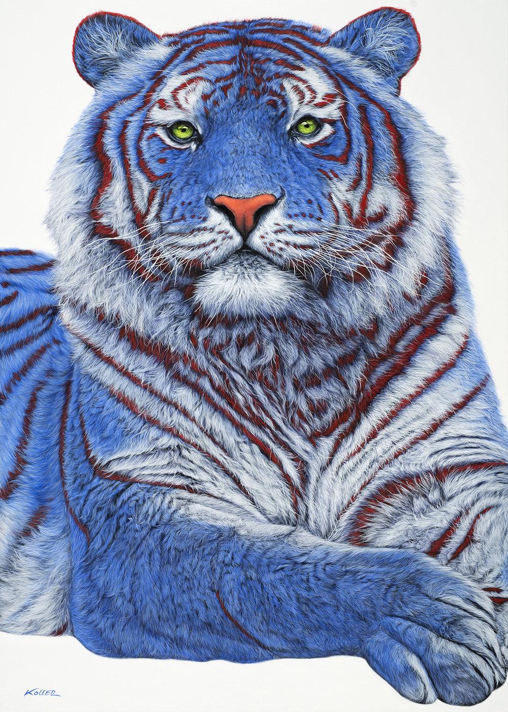 Copy of Helmut Koller, Siberian Tiger in Blue