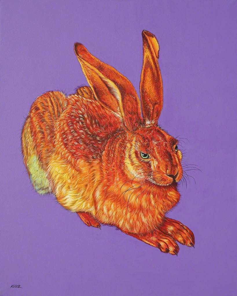 Helmut Koller, Dürer Hare in Orange