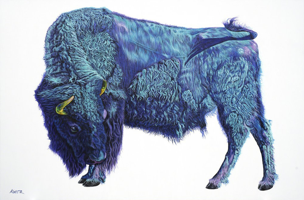 Helmut Koller,  Bison On White , 2019, Acrylic on canvas, 85 × 120 in. (215.9 × 304.8 cm)