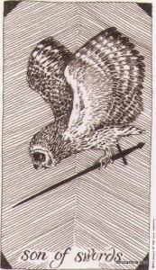 Son of Swords Wild Unknown Tarot