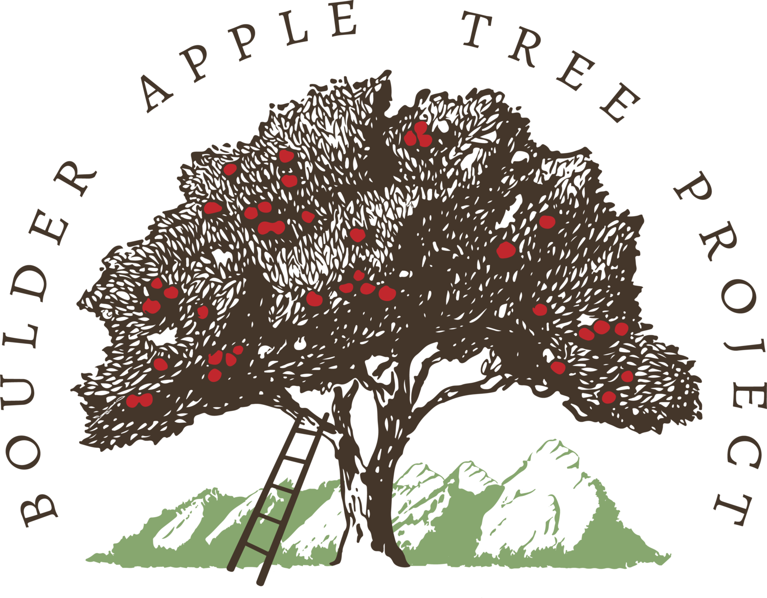 The Boulder Apple Tree Project | Rediscovering the past, together