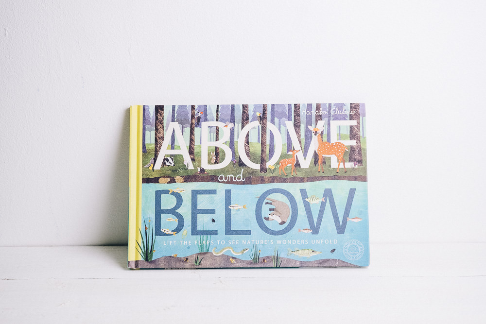 Above and Below Book