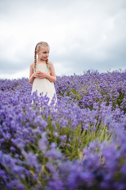 Lavender_bath_melts-2.jpg