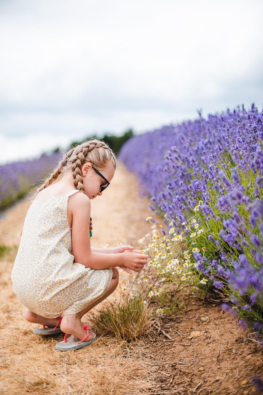 Lavender_bath_melts-3.jpg