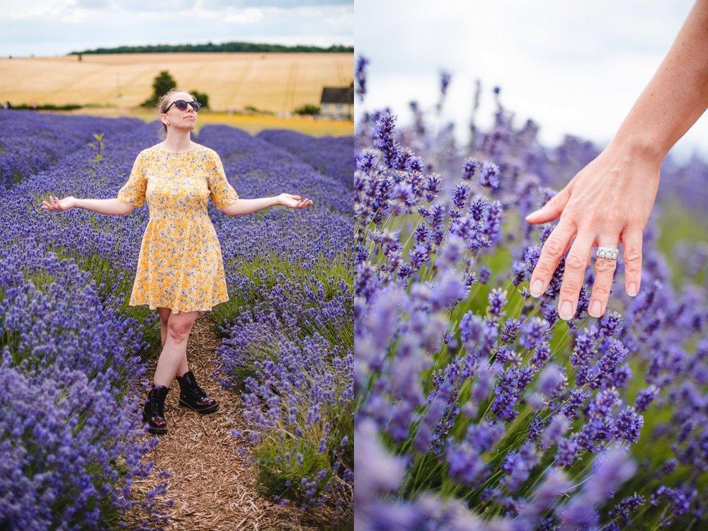 Lavender_bath_melts_duo.jpg