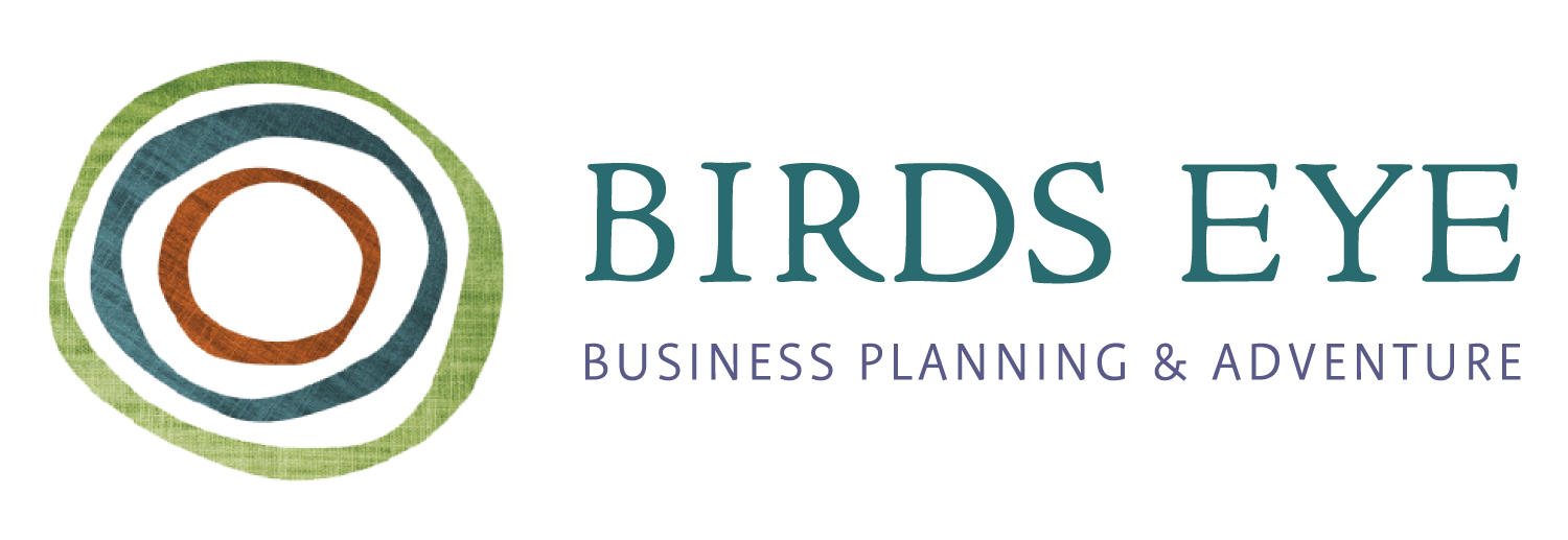 Birds Eye Business Planning & Adventures