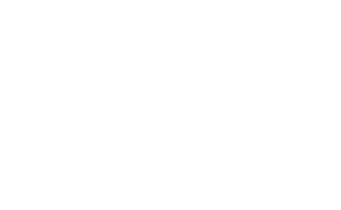 The Plaid Cow