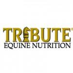 Tribute-Feed-Logo-resized-image-150x150.jpg