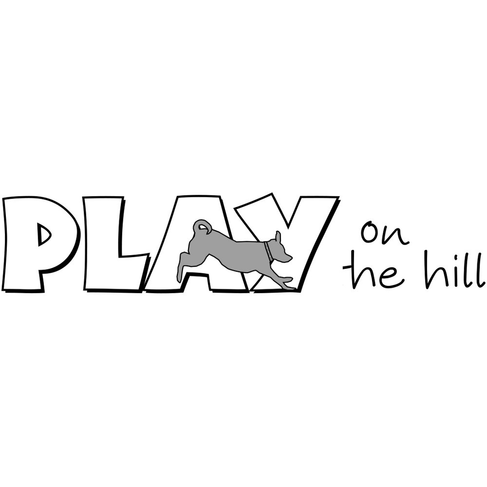 playonthehill.jpg