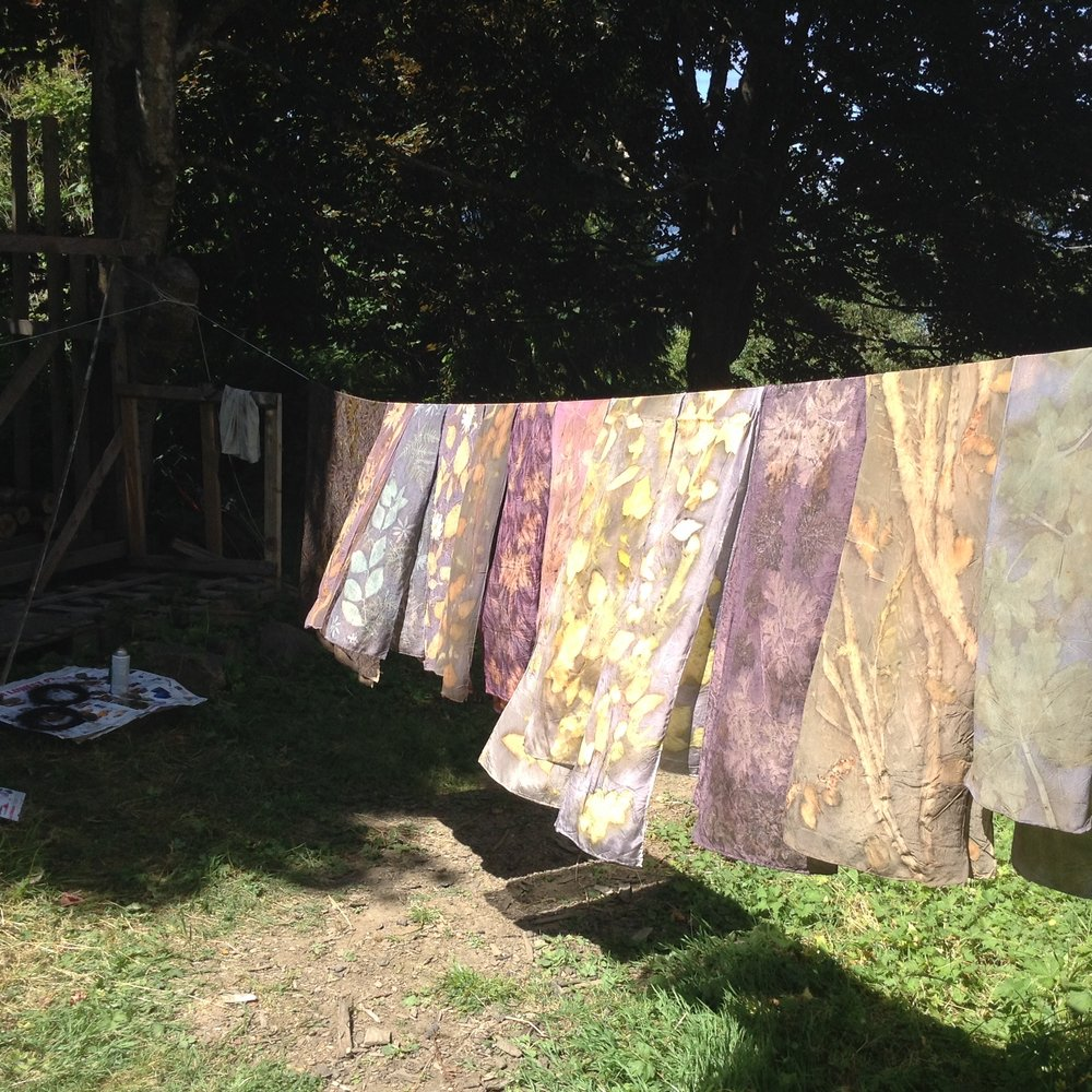 Hanging the silk on the line is very gratifying – the sun illuminates them until they glow.