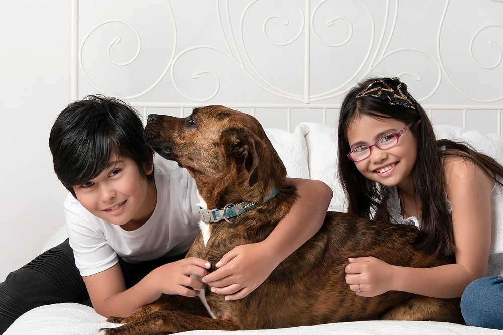 Dogs and kids photography (22).jpg