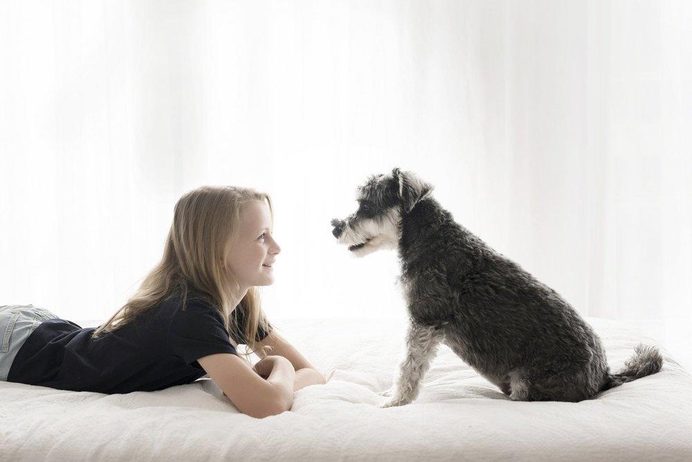 dog-photographer-sydney