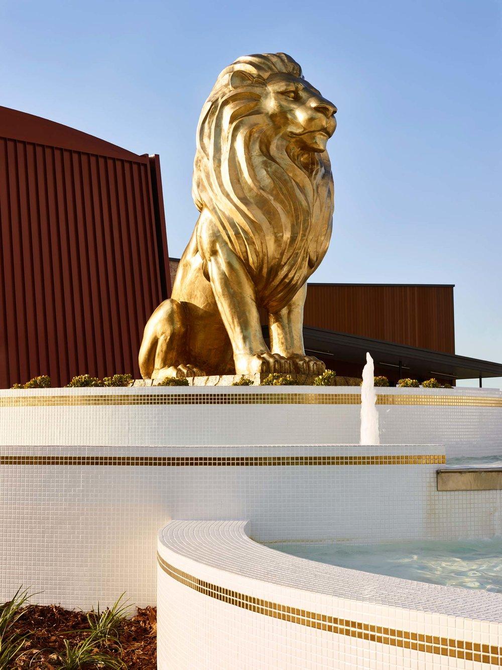 Lions-Richlands-2017-16.jpg
