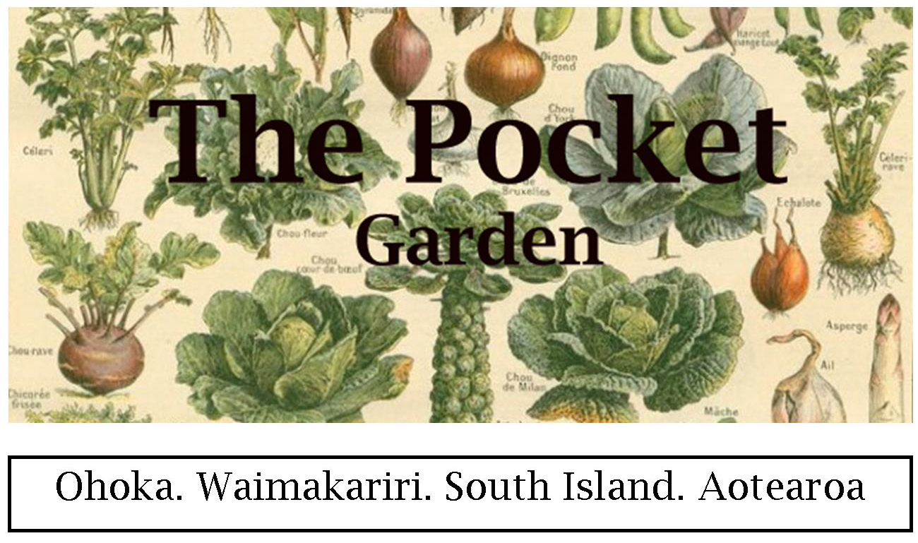 The Pocket Garden  Cooking Classes