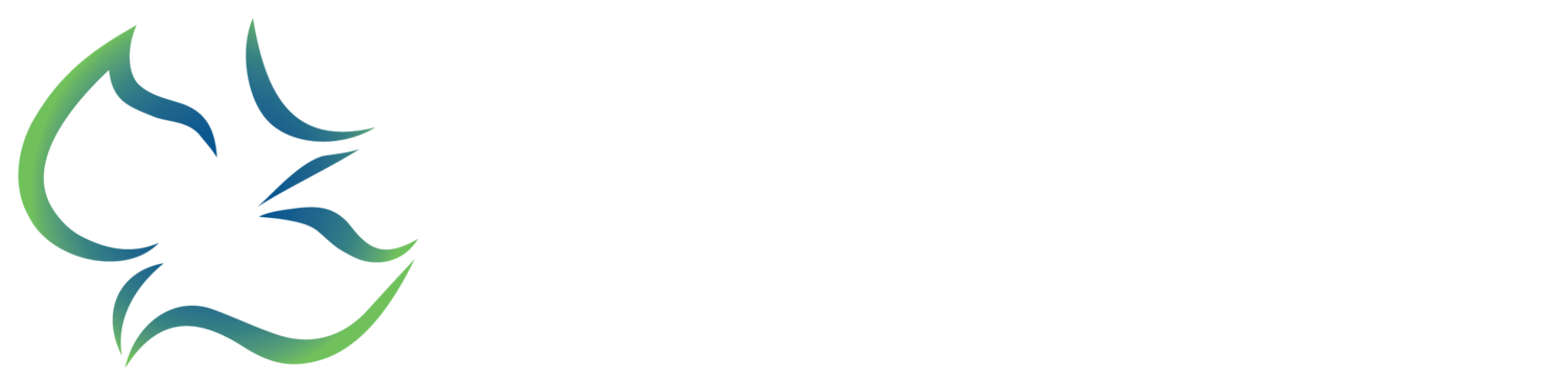 Calvary Chapel Valley Springs